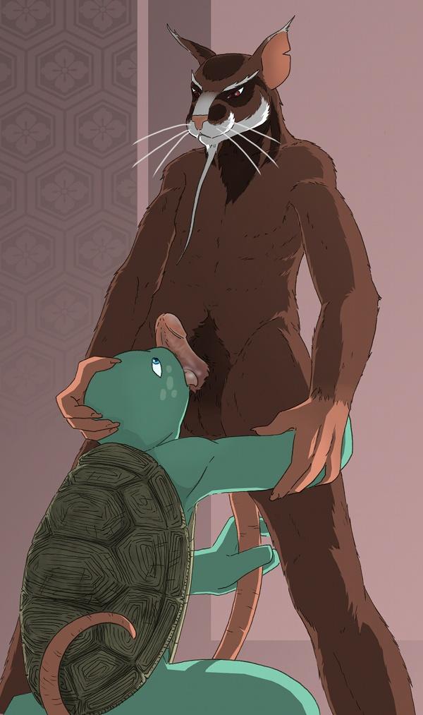 turtles teenage mutant ninja angel A certain magical index hyouka