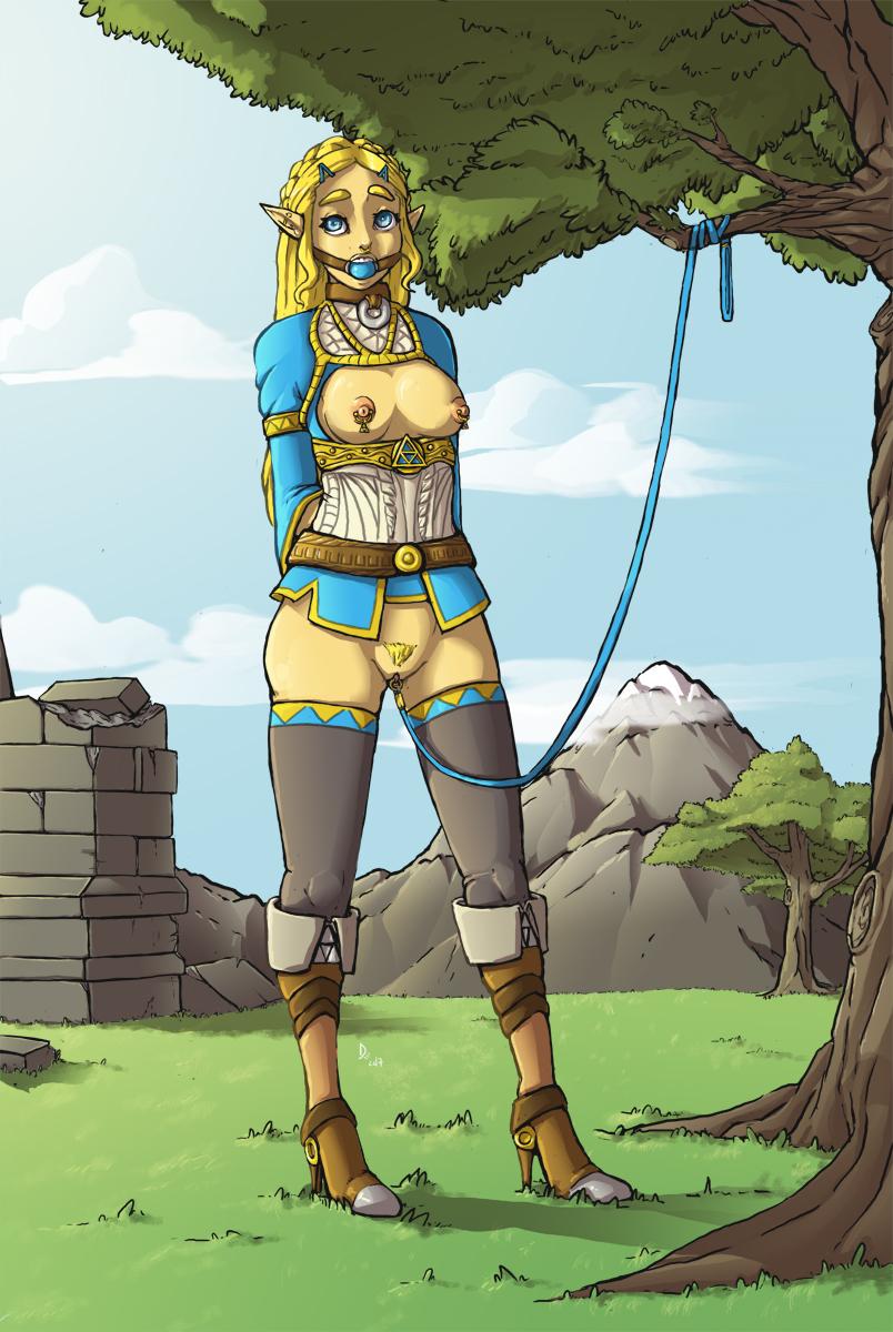 breath wild ramella the of Legend of zelda cartoon link